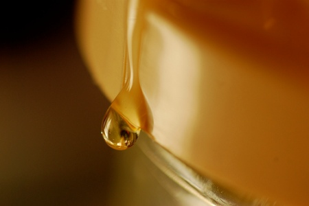 A drop of honeyPhoto by alsjhc
