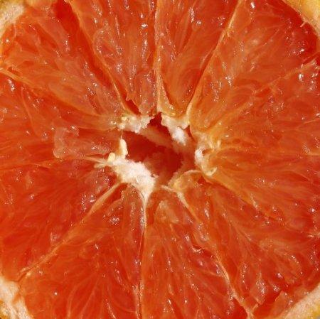 grapefruitsx