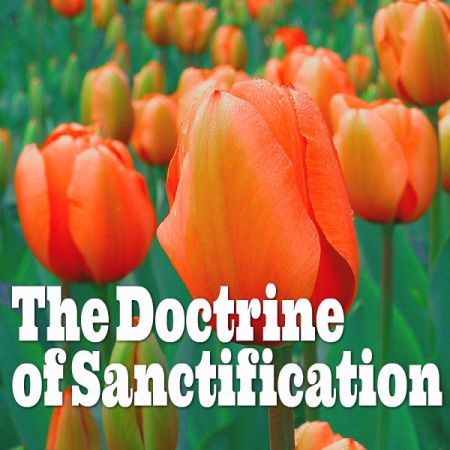 doctrine of sanctification