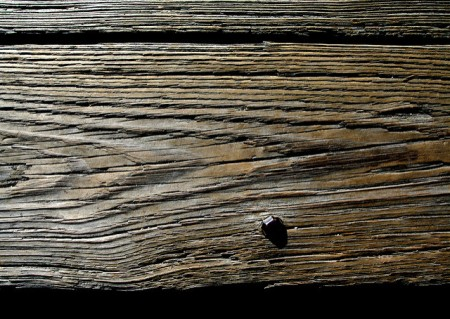 Old Plank by Scott Robinson
