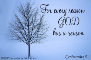 seasons-of-life-christian-poetry-by-deborah-ann